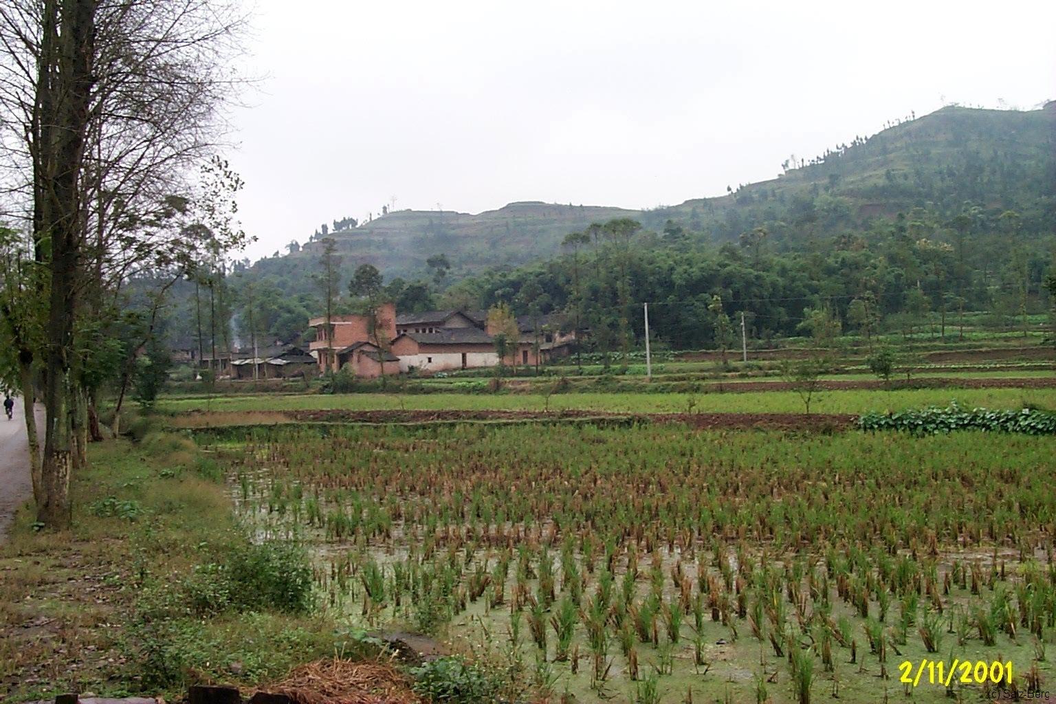 China3_Chongqing_4093