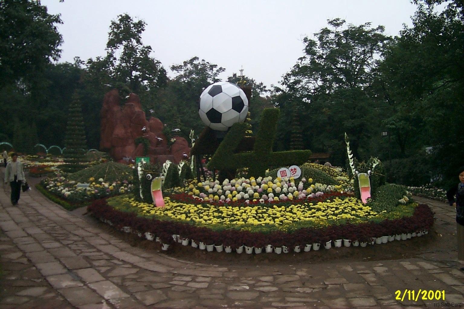 China3_Chongqing_4131