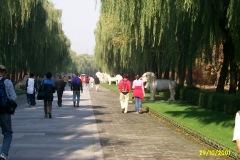 China1_Peking_3965