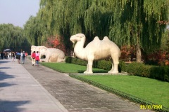 China1_Peking_3967