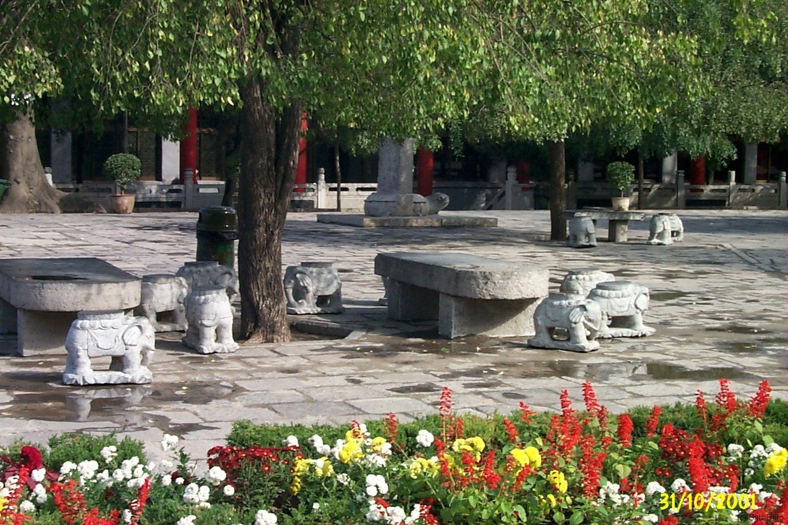 China2_Xian_4001